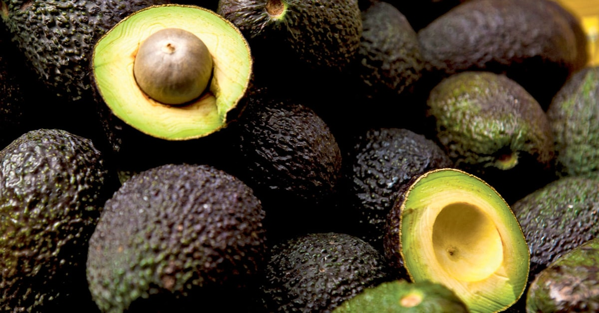 cargamento aguacate hass